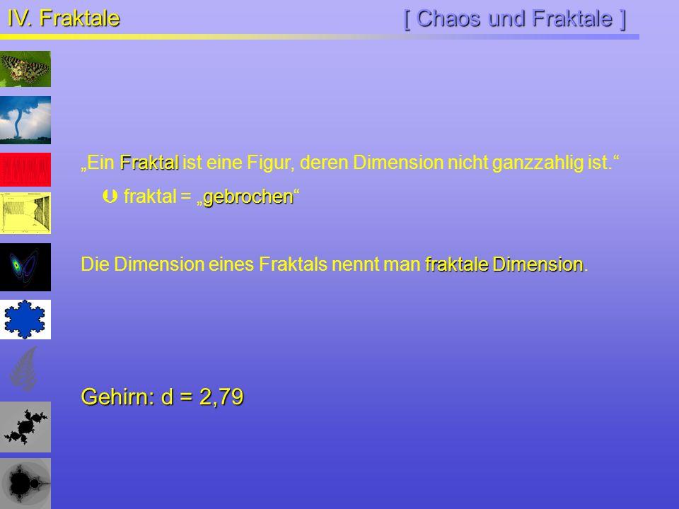 IV. Fraktale [ Chaos und Fraktale ] Gehirn: d = 2,79